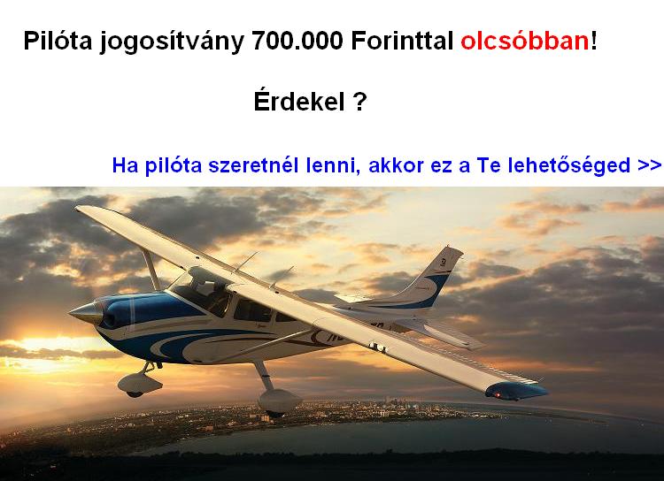 pilótaképzés, pilóta jogosítvány